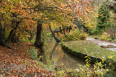 Japanese Gardens (Sue_Hutton) Tags: graceeden michaellauphotography newsteadabbey nottinghamshire preraphaelite costume model outdoors photoshoot