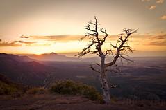 South-West-Colorado (Ray Devlin) Tags: mesaverde colorado desert nikon d300 sunset barren