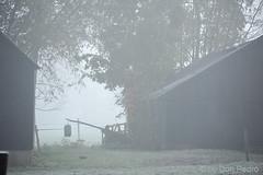 frisse-ochtend-op-het-platteland (Don Pedro de Carrion de los Condes !) Tags: donpedro d700 fx nijkerk schuur vorst rijp aanslag wit ochtends vroeg boerderij winters vriezen winter winterlandschap winterweer