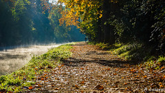 Je marche seul (Shoot Enraw) Tags: 18200mmf3556 canaldumidi navigation automne aude trbes octobre