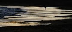 Water patterns, Port Elliot (Explore) (robynbrody) Tags: portelliot fleurieu peninsula southaustralia beach water sea seaweed kelp patterns australia sand ocean waves surf
