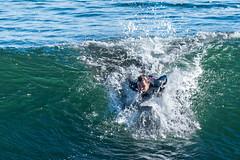 ArchitectGJA-3945.jpg (ArchitectGJA) Tags: lighthousepoint surfing californiababy hurley wetsuit santacruz ripcurl xcel lighthousefield california beach marineanimals coast cliffs streetphotography waves surfingsteamerlane oneill coastlife steamerlane montereybay