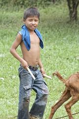 goat herd boy with 2 sticks (Pejasar) Tags: boy goatherder goat twosticks child working shirtless eltesoro guatemala