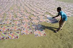 Game boards drying process! (ashik mahmud 1847) Tags: bangladesh d5100 nikkor people working pattern texture man light shadow