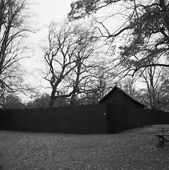 """You made me"" (rotabaga) Tags: sverige sweden svartvitt göteborg gothenburg blackandwhite bw bwfp film mediumformat mellanformat 120 6x6 tmax400 r09 lomo lomography lubitel166 twinlens analog slottsskogen"