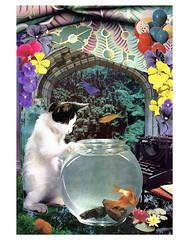 Pisces - StarCat (tjager) Tags: astrology zodiac starcat livingferal cat kitten collage art analog pisces fish violet watersign water