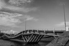 Puente Leonel Viera (Willysancarlos) Tags: puente puentes puentelabarra maldonado uruguay arroyo blancoynegro bn