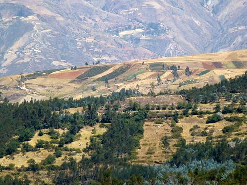 les montagnes et les cultures vers 3500m