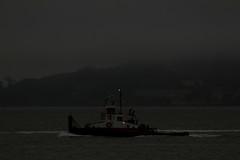 Wildcat_001 (Walt Barnes) Tags: canon eos boat ship vessel richmond calif tugboat tug wildcat sanpablobay workboat 60d canoneos60d eos60d westarmarineservices wdbones99