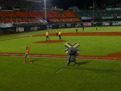 P1000725 (celeste_mer) Tags: 棒球 台南棒球場 2009年