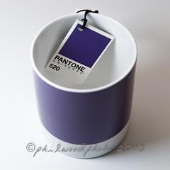 290:365:2013 - Pantone 520 (phil wood photo) Tags: square october purple label tag mug 365 universe grape 520 pantone day290 productphotography project365 2013 colourchallenge 3652013 17102013