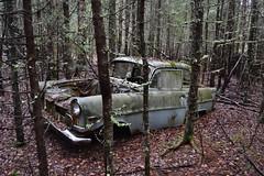 Opel Olympia Rekord (Flash 86) Tags: old abandoned car junk rust automobile sweden decay rusty bil olympia vehicle sverige rost rostig opel skrot rekord gammal skrotbil fordon frfall vergiven skogsvrak