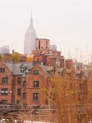 Rooftops and the Empire State Building (ejlovegrove) Tags: nyc rooftops highline