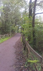 Arditurri Bidegorria (Oiartzun) (Aitor Uranga) Tags: bike euskalherria basquecountry gipuzkoa pasvasco bidegorri oiartzun arditurri