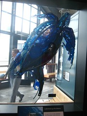 "Artwork in the Monterey Bay Aquarium • <a style=""font-size:0.8em;"" href=""http://www.flickr.com/photos/109120354@N07/11042951576/"" target=""_blank"">View on Flickr</a>"