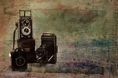 ... sonidos fotogrficos ... (Cani Mancebo) Tags: bodegn texturas canimancebo esenciademujeriii