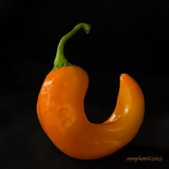 Pepper (Oomphoto - Nancy G. Villarroya) Tags: orange pepper vegetable peppers curl sweetpepper orangepepper dsc18903