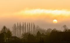 Sunset (genf) Tags: trees winter sunset sun mist field clouds evening bomen mood farm sony wolken atmosphere a77 nwn boerderij tmt uithoorn stemming