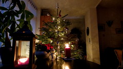 HAPPY HOLIDAYS, THE NETHERLANDS (pwitterholt) Tags: christmas family light feest holiday home canon hope candles candle christmastree enjoy thuis groningen cosy kerstboom kerst canonpowershot bedum feestdagen kaars 2014 verlichting versiering feestverlichting kerstverlichting canonpowershotsx40hs canonsx40