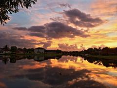 Sunrise 2-20131228 (Kenneth Cole Schneider) Tags: sunrise backyard florida miramar