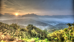 Sunrise at Tea Farm 茶煙朝出認雲歸 (Sharleen Chao) Tags: color fog sunrise canon landscape day taiwan greens 台灣 169 hdr 風景 sunflare nantou 日出 1635mm teafarm 廣興 雲霧 凍頂 canoneos5dmarkiii canon5dmarkiii pwpartlycloudy