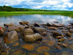 Headwaters of the Mississippi (jasonandrewlayne) Tags: minnesota mississippiriver mn mississippiheadwaters lakeitasca jasonlayne jasonlaynecom djjasonlayne