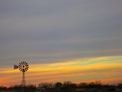 Cold sunset {6/365} (Explored) (therealjoeo) Tags: pink blue trees sunset sky windmill clouds texas purple taylor 365 oragne 365project