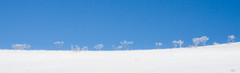 baconnet-5885 (verolauro) Tags: montagne grenoble hiver 7d vercors picard isere randonnée rhonealpes baconnet montaiguille veroniquelaurolillo decembre2013 noel2013