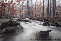 Brook, Rocks, and Winter Foliage (Dave Blinder) Tags: trees winter nature water landscape scenery rocks long exposure running dover randolph 2014 morriscounty ndfilter drb img7229 canoneos50d heddencountypark tamronspaf1024mmf3545diii