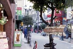 fish tiger...XD (komehachi888) Tags: kobe nikonfm2 streetsnap filmshots nokton58mmf14 mllerfoto400