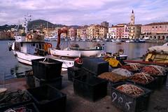Gozzi (photoalfiero) Tags: sea italy fisherman mediterraneo barca italia barcos liguria streetphotography barche boating sail sailor pesca navegar nautica marinas mediterranian pescatori tirreno gozzo lestradeparlanoimuriurlano