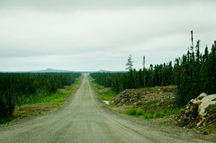 No end to this... (WhiteFlowersFade) Tags: voyage road travel trees canada forest newfoundland landscape nikon labrador north roadtrip route arbres paysage nord tnl terreneuve forts d7k d7000