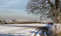 Winter Walk (steg2012) Tags: red people snow ice field landscape frost walk hertfordshire hitchincameraclub ringexcellence dblringexcellence tplringexcellence eltringexcellence