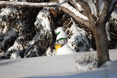Even Snowmen Get Cold (Select42) Tags: winter snow snowman alberta sturgeoncounty