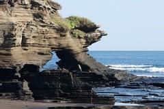 "_DSC6731 - Version 2     ""Sea Lion"" and the  Galapagos  ""Santiago/Puerto Egas  area shoreline""      2.5k (ChanHawkins) Tags: santiago sea de puerto am galapagos area april sat sealion marino egas lion"" 13"" ""leon ""galapagos galapagos"" shoreline"" ""santiagopuerto"