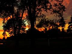 Sunset through the trees (kirsten.elise) Tags: trees sunset orange colors golf purple michigan westmichigan gleneagle hudsonville puremichigan