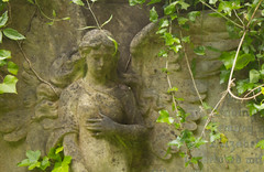 av12 (BasiliskSam) Tags: cemetery graveyard bristol graves tombstones tombs arnosvale