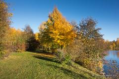 Autumn in Falun (TheIsland Studios) Tags: sweden sverige falun dalarnaslän kolgården