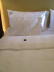 Mint on the pillow (toast_jr) Tags: scylla tauck msswissjewel