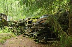 The old car Cemetery (saabrobz) Tags: cemetery car junk sweden ghost sverige junkyard scrapyard carcemetery bstns