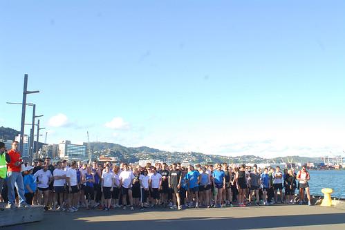 046 Wellington