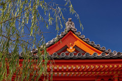 Willows and roof (Tim Ravenscroft) Tags: willow tree temple roof detail vermillion sanjusangendo kyoto japan