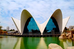 Oceanographic (eleonoralbasi) Tags: valencia spain espaa view travel building oceanographic reflections outdoor city architecture modern colors beautiful