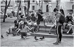 Plaza De Armas (Samy Collazo) Tags: leicalllf1953 elmar50mmf351953 kodaktrix400 plazadearmas sanjuan oldsanjuan viejosanjuan puertorico bn bw