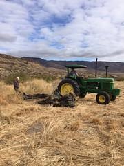 IMG_1411 (Oregon Natural Desert Association) Tags: denny jones ranch weed mat removal 2016 stewardship trips