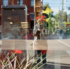 In The Window (marysmyth(NOLA13) ) Tags: 501cm autumn bottles cabbagetown daisies film flowers gerbera hasselblad kodakportra400 lily me mediumformat reflection restaurant riverdale street toronto urban window square