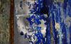 (jtr27) Tags: dsc04983e jtr27 sony alpha alpha7 a7 ilce7 ilce csc mirrorless canon fd fdn nfd 50mm f14 manualfocus blue old truck abstract peeling paint maine newengland junkyard