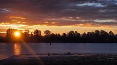 sunrise (janicelemon793) Tags: sunrise river clouds morning october outdoors britishcolumbia coquitlam