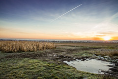 Winter Landscape (CraigHowesPhotography) Tags: winter frozen morning sunrise sun cold frosty farm countryside