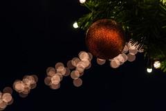 advent calendar #5 (JayPiDee) Tags: advent adventcalendar adventskalender christbaumkugel christmas christmasmarket christmasglitterball christmasillumination lichterkette tamron tamronspaf2875mmf28xrdi tamron287528 tannenbaumkugel weihnachten weihnachtsbeleuchtung weihnachtsmarkt xmas holidaylights lübeck schleswigholstein deutschland